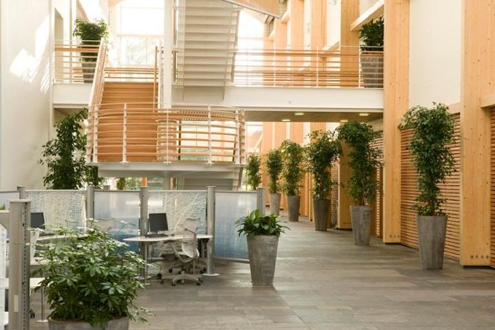 Let there be light: modern office designs will incorporate as much natural light as possible.