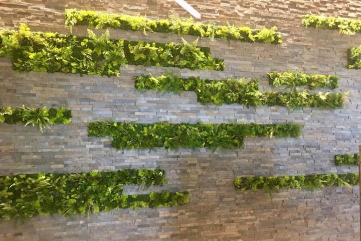 Good Earth Plant Company has so many innovative ways to add plants to your interior design today, including spectacular moss walls.